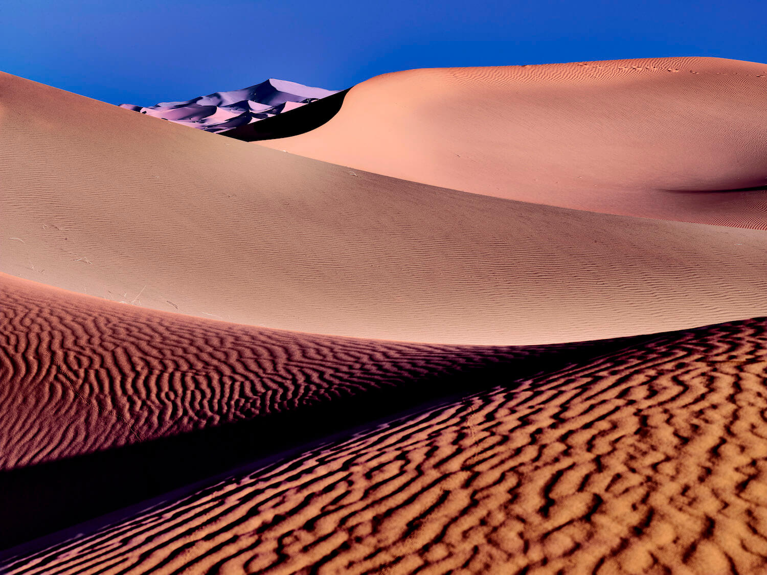 dune landscapes are ideally set up portfolio reviews